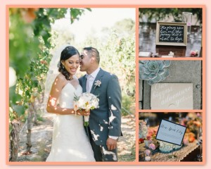 Melissa and Craig's Winery Estate Wedding